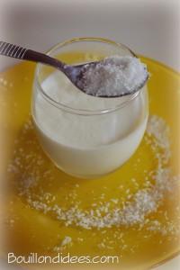 yaourts maison noix de coco Bouillondidees