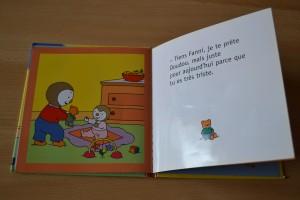 Livre Coin lecture Arrivée d'une petite soeur T'Choupi 2 chut les enfants lisent Bouillondidees
