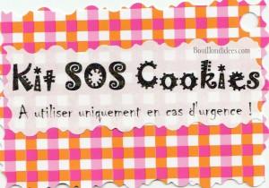 KIT Pot SOS Cookies cadeau fait maison maitresse fête des mères noël étiquette cadeau Bouillondidees