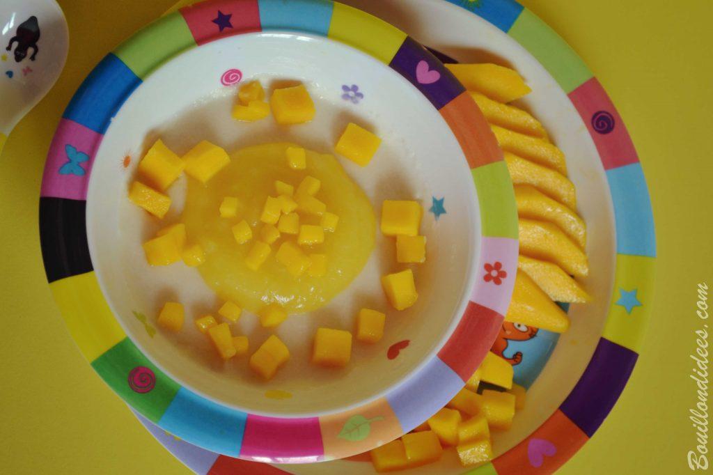 Porridge por-riz-dge bébé lait céréales de riz Good Gout (Modilac riz, bébé APLV IPLV) Bouillondidees