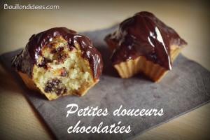 Petites douceurs chocolatées sans GLO ou mini-gâteaux