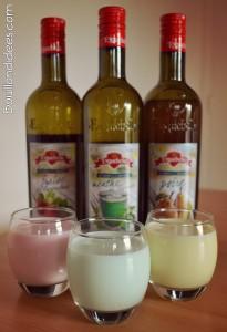 yaourts aromatisés au sirop Bouillondidees