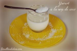 yaourts maison à la noix de coco Bouillondidees