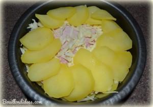 gateau de pommes de terre montage (sans GLO, gluten, lait, PLV, lactose, oeuf) Bouillondidees