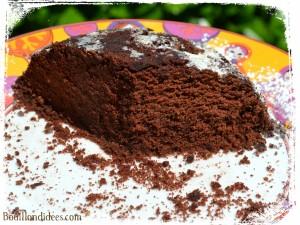 Gâteau minute express Micro-ondes, sans GLO (sans gluten, lait -PLV ou Lactose, ni oeuf) vacances Bouillondidees