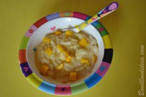 Porridge por-riz-dge bébé lait céréales de riz Good Gout (Modilac riz, bébé APLV IPLV) recette Bouillondidees